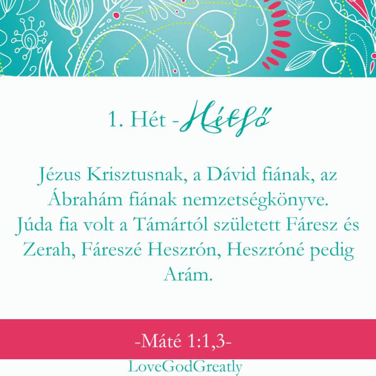 kari-11